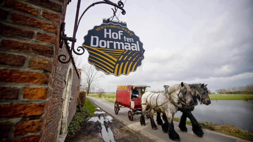 Hof ten dormaal33 2 brewery cut1
