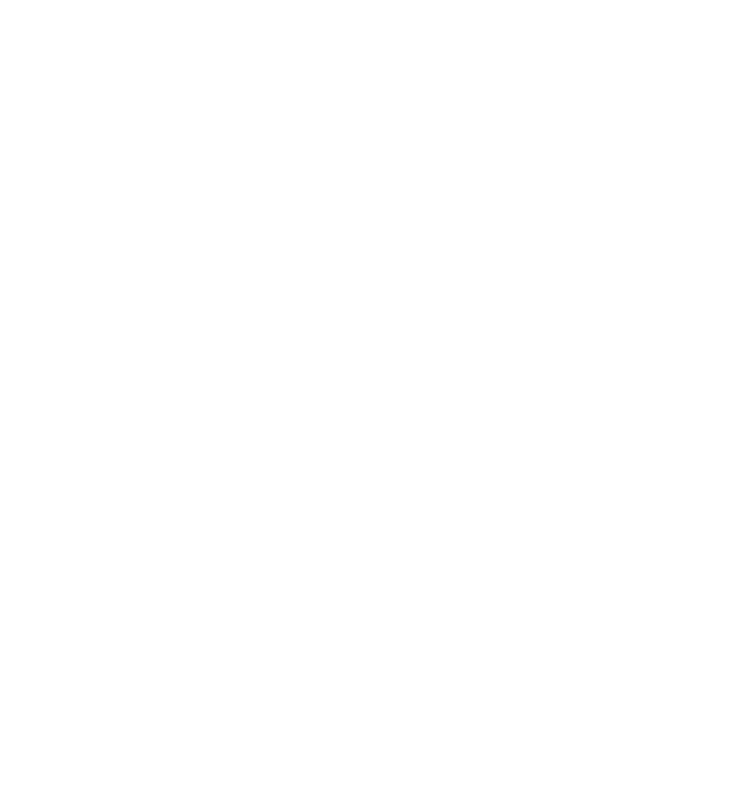 Icon state wi